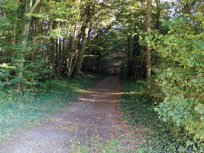 Parcs et Balades - Ferrières Quatre Vallées