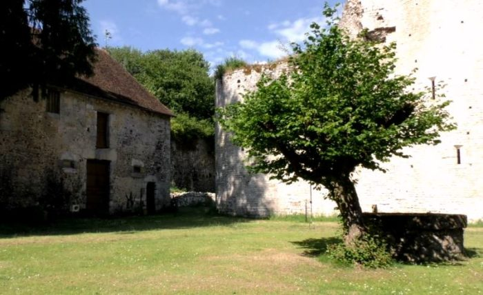 chateau Mez le maréchal drone.17_ – Copie